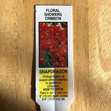 Snapdragon - Floral Showers Crimson : 4 inch pot
