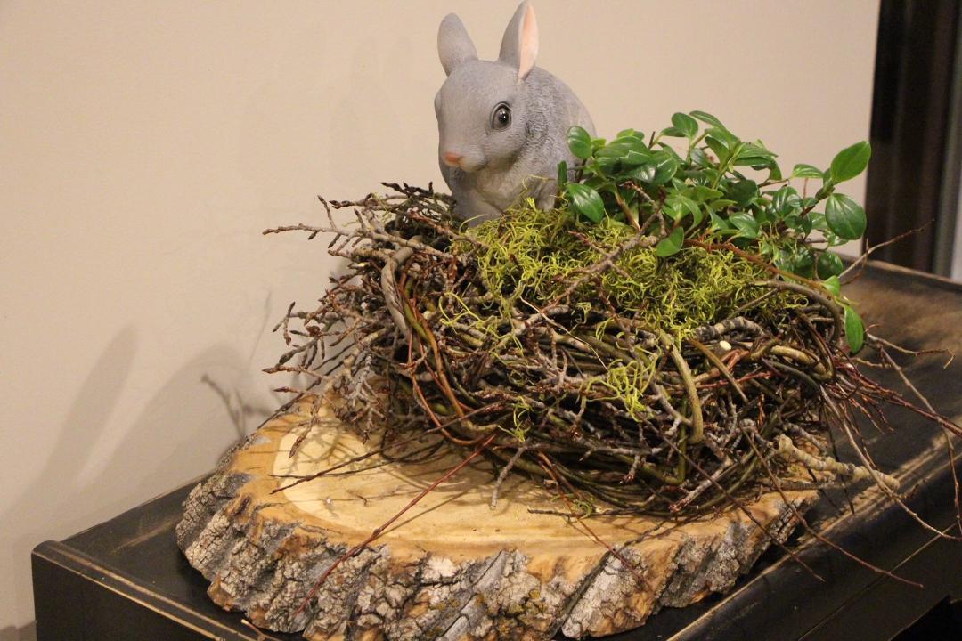 Indoor Outdoor willow nest
