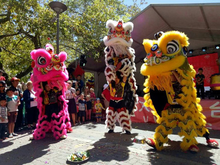 [Canberra Weekly] PMDLD are ready for the 2019 Lunar New Year!