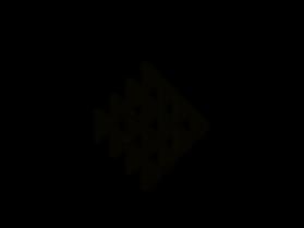 9-Patiki-Flounder_edited.png