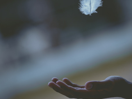 You Can Succeed with a Feather