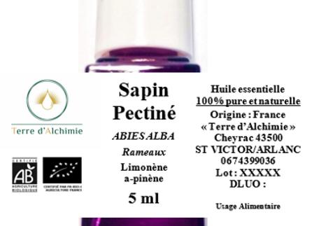 HE Sapin Pectiné