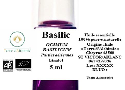 HE Basilic
