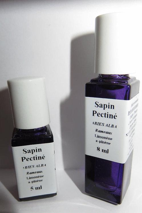 Sapin péctiné (Pseudotsuga menziesii)