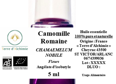 HE Camomille Romaine