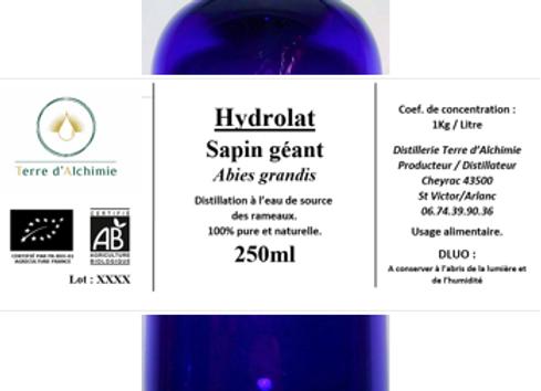 HA Sapin Géant