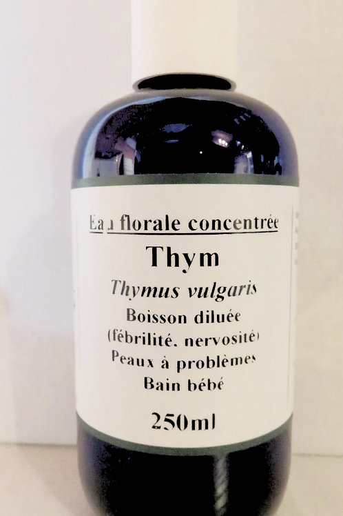 Thym à thuyanol (Thymus vulgaris)