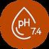 NBP150 logo-02.png