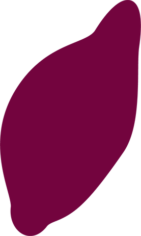 Wisely_RondPatatesDouces_MAUVE_.png