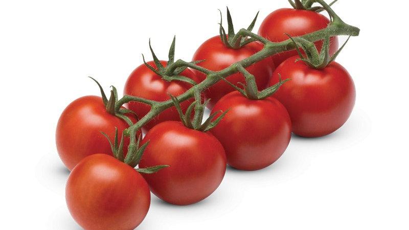 Tomate Cerise Barquette 650g