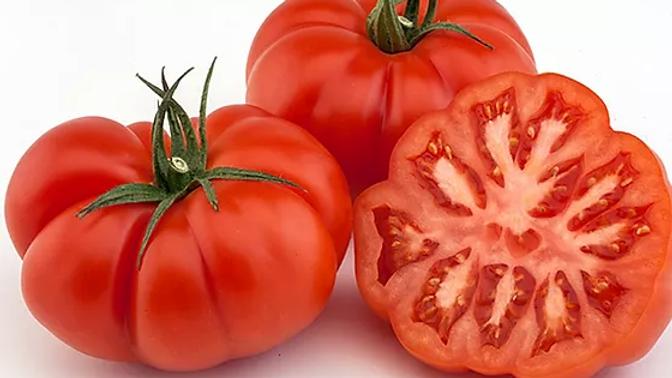 Tomate Rebellion portion de 650g