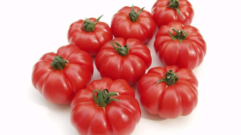 Tomate Marinda Portion 650g