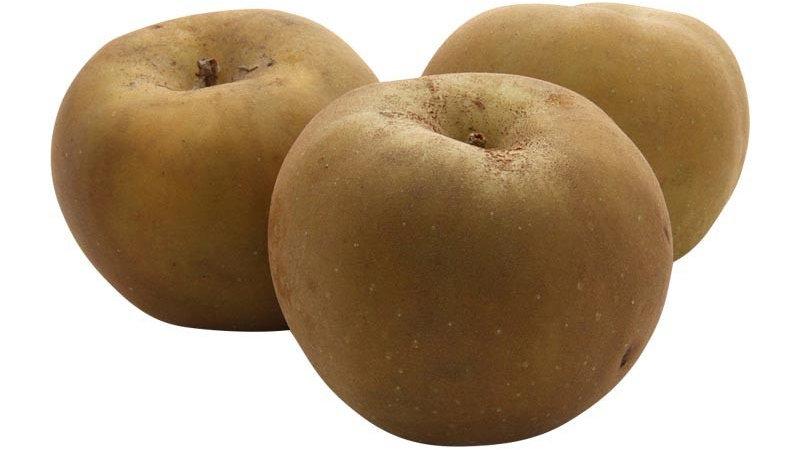 pomme Canada portion de 750g