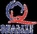 Logo_QT_edited.png