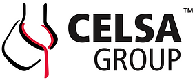 Celsa Group.png