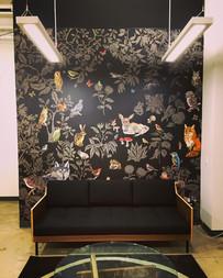 Fôret noire Wallpaper - Domestic