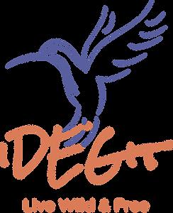 iDEGit Logo