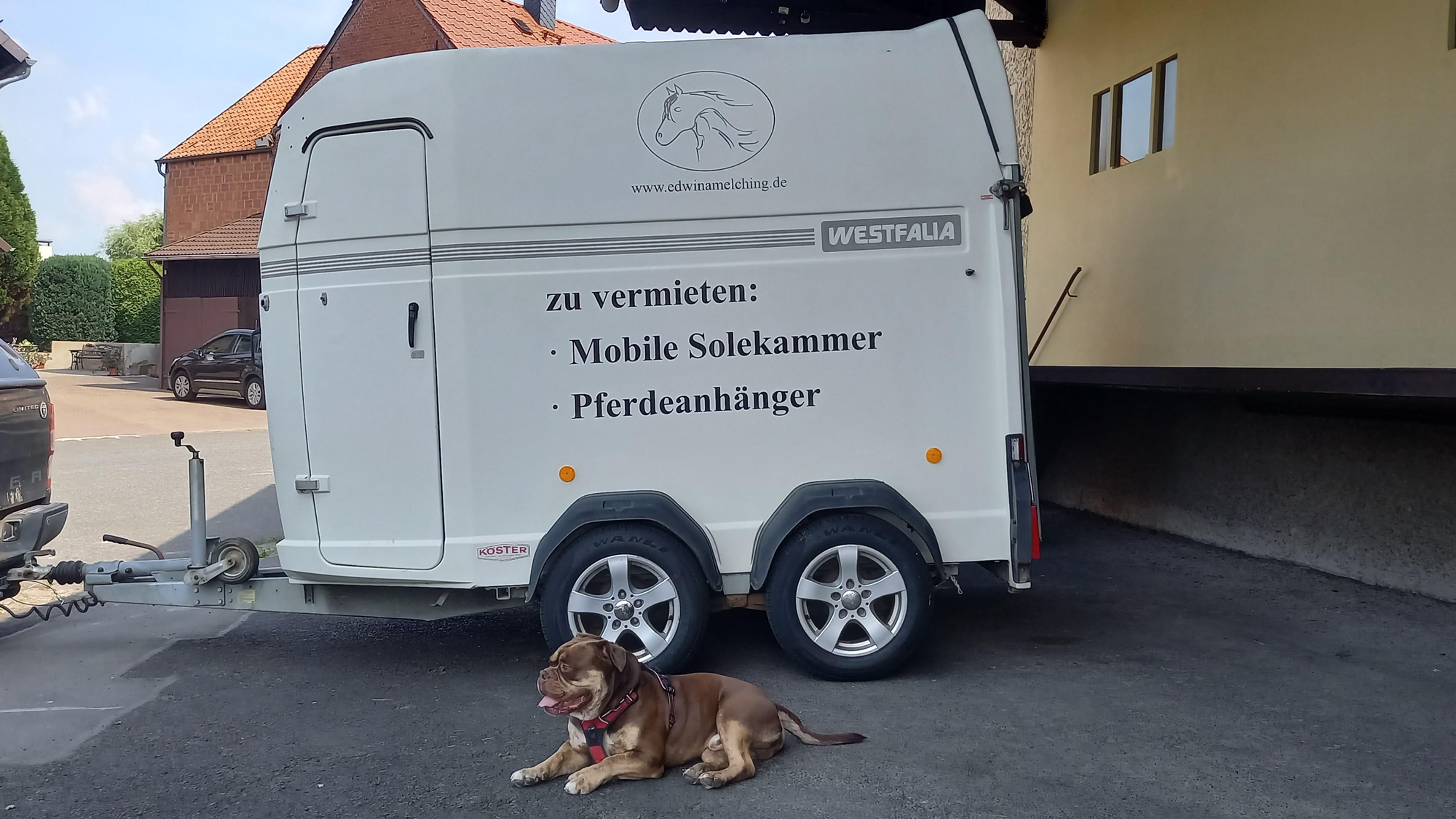 Mobile Solekammer (Vermietung) ab € 250