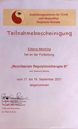 Teilnahme Fasz. Regulationstherapie_21.jpg