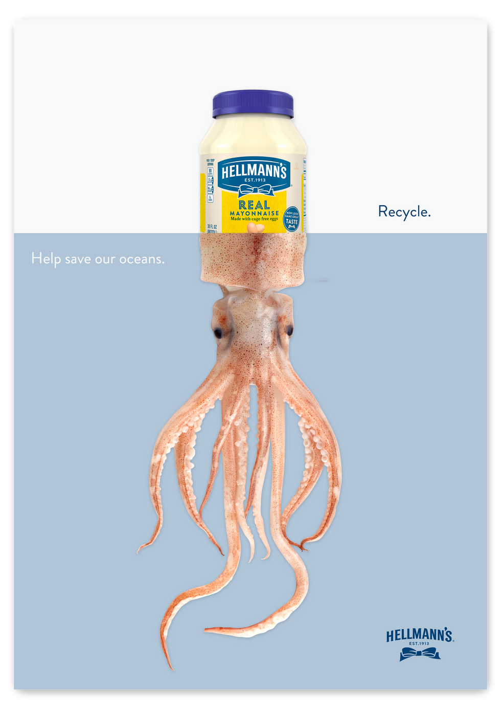 Save our oceans squid.png