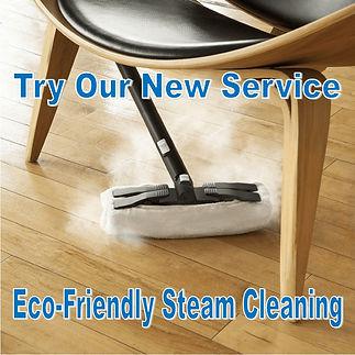 Steam Cleaning Pop-up.jpg