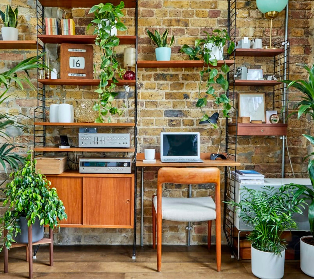 patchplants.com add a touch of green to a home office