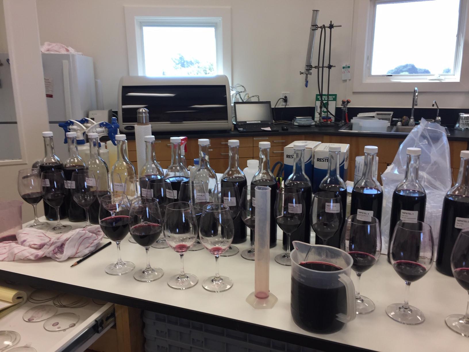 Bottling Blend Review