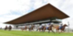 Curragh Racecourse.jpeg