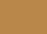 BSDLogo - Brown_small.png
