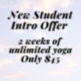 New Student Intro offer.png