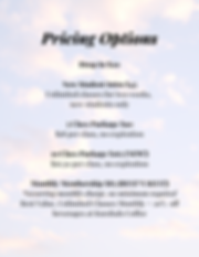 Pricing Options.png
