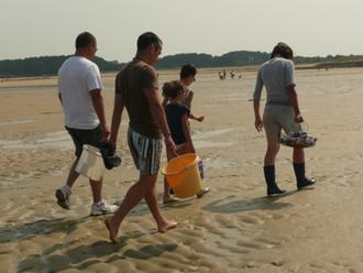 Sortie pêche à pieds à Carnac