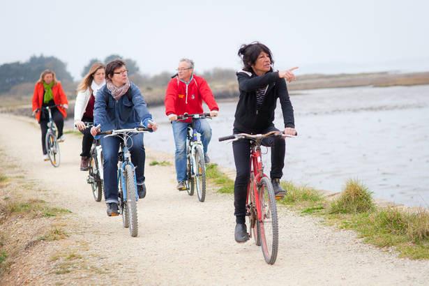 Les_Marais_de_la_Presqu'île_de_Rhuys_à_Vélo.jpg