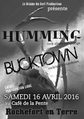 Concert Humming et Bucktown au Café de la Pente