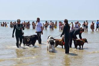 Fête des Sauveteurs en Mer à Damgan