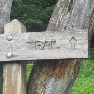 Trail des Landes du Loup - COURNON