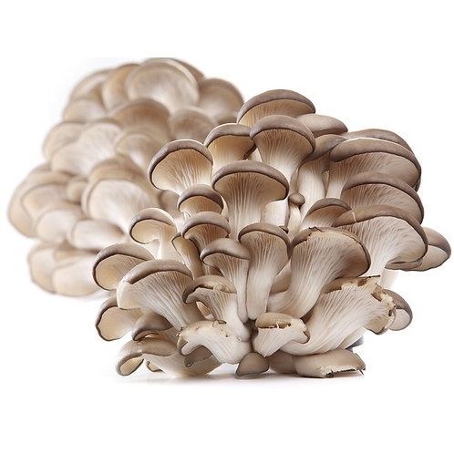 Oyster Mushrooms A La Carte