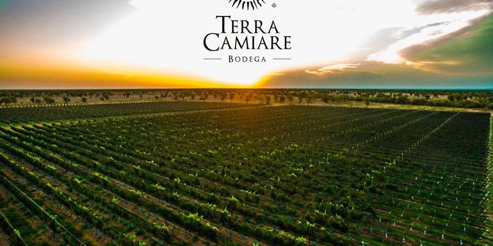 Vinos con historia y terroir · Experiencia de vinos cordobeses