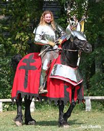 knights of valour 2007
