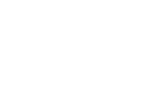 The_Country_Network_Logo copy