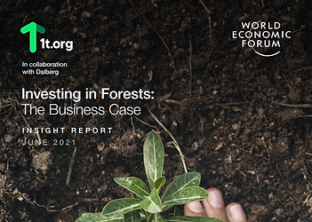 Investing in Forests: The Business Case