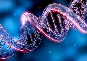 test frammentazione dna spermatico.jpg