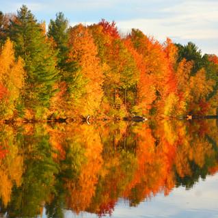 Fall colors in Munising MI