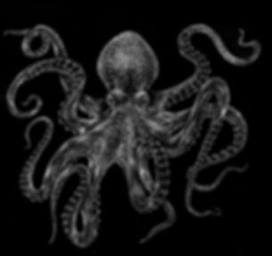 bost_pfister_kraken.jpg