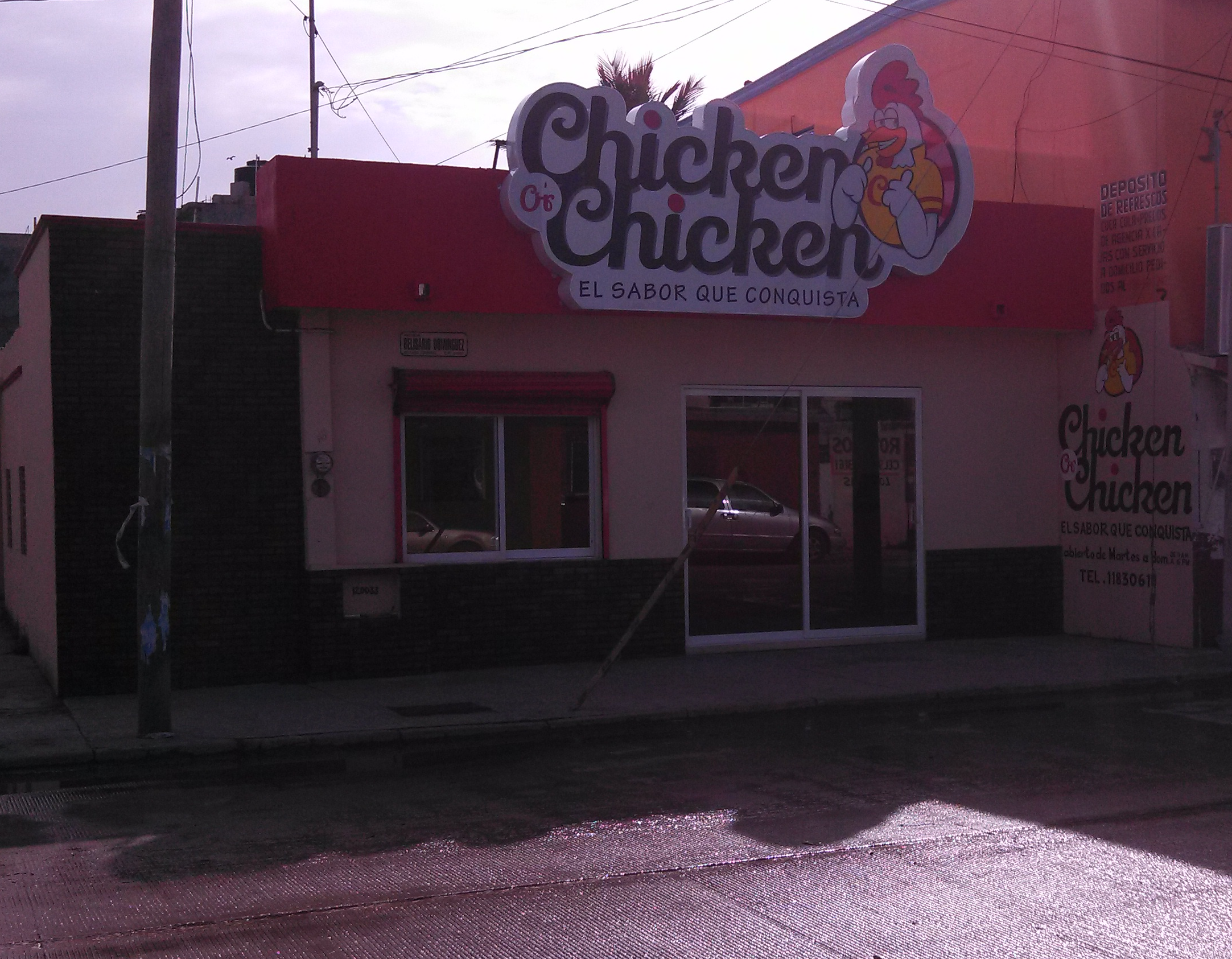 foto chicken