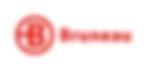 bruneau-logo.png