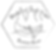 Burkes Canoe Trips_Logo.png