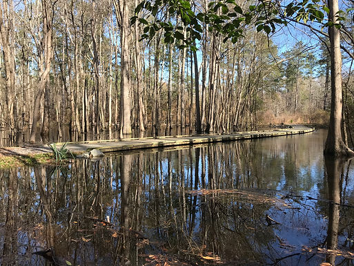 New Black River Water Trail and Park