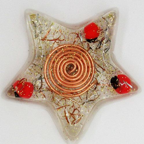 Peruvian Huayruro Seeds Star