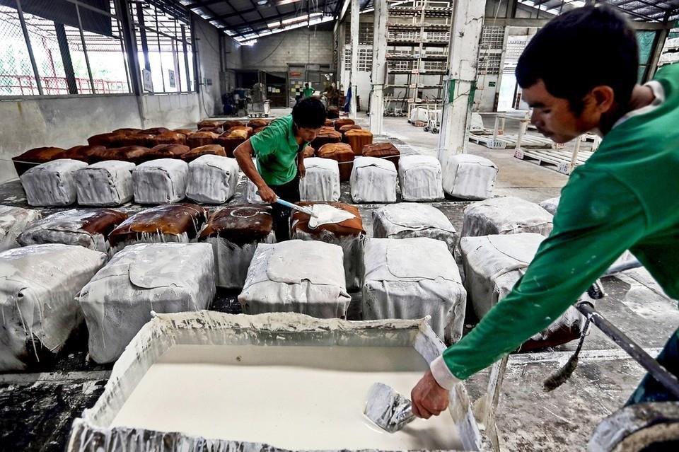 + 23% d'exportations de caoutchouc